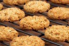 ciastka oatmeal Zdjęcie Stock