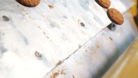 Ciastka opuszczają piekarnika w piekarni zdjęcie wideo