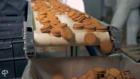 Ciastka są poruszający na konwejerze zbiory wideo