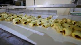 Ciastko linia produkcyjna przy karmową fabryką zdjęcie wideo
