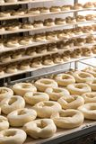 Ciasto przygotowywający w przemysłowych bagels fabrycznych Obrazy Royalty Free