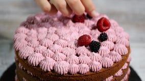 Ciasto szef kuchni dekoruje czekoladowego tort z jagodami zdjęcie wideo