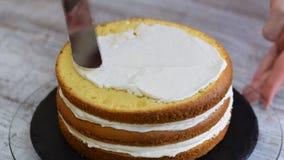 Ciasto szef kuchni dekoruje tort w kuchni Robi? tortowy z ananasowym plombowaniem zbiory wideo