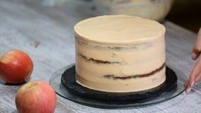 Ciasto szef kuchni dekoruje tort z śmietanką Pojęcie domowej roboty ciasto, gotuje zasycha zbiory