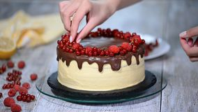 Ciasto szef kuchni dekoruje tort z jagodami zbiory wideo