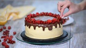 Ciasto szef kuchni dekoruje tort z jagodami zbiory