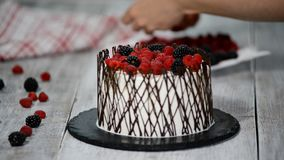 Ciasto szef kuchni dekoruje tort z jagodami zdjęcie wideo