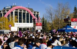 CIBC Run for the Cure Stock Photo