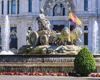 Cibeles Fountain - a fountain in the square of the same name in. Madrid royalty free stock photo