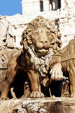 Cibeles Fountain Stone Lion Detail, Madrid Royalty Free Stock Images