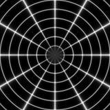 Cible Modèle noir et blanc régulier de rideau aligné en oeufs Illustration riche tramée de modèle Noir et wh abstraits de fractal Photo libre de droits