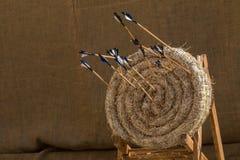 Cibles et flèches de tir à l'arc de paille Image libre de droits