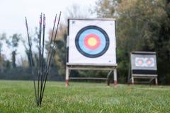 Cibles extérieures de tir à l'arc sur le champ d'herbe entouré par la forêt Photo stock