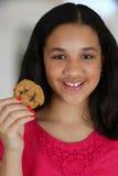 Cibo del biscotto immagini stock