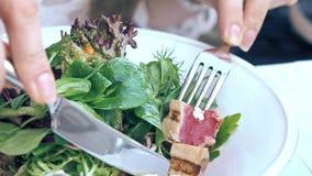 Cibo dell'insalata di Nicoise della lattuga e del tonno al ristorante, haute cuisine immagine stock