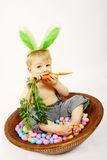 Cibo della carota Fotografia Stock Libera da Diritti