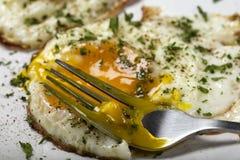Cibo delle uova fritte fresche con le erbe Fotografia Stock Libera da Diritti