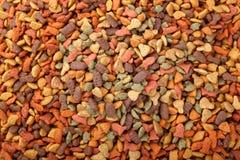 cibo per cani a secco del gatto in granelli Fotografia Stock