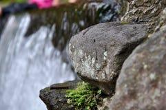 Cibodas water stock image