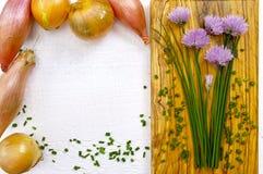 Ciboulette de floraison de vert frais, échalotes et oignon jaune Photo stock