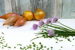 Ciboulette de floraison de vert frais, échalotes et oignon jaune Photographie stock libre de droits