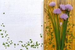 Ciboulette de floraison de vert frais avec les fleurs pourpres Image libre de droits