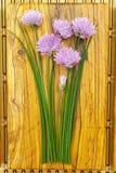 Ciboulette de floraison de vert frais avec les fleurs pourpres Photo stock