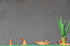 Ciboulette verte de ressort Photographie stock