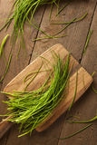 Ciboulette verte organique crue Photos libres de droits