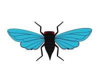 Cicada Moth Royalty Free Stock Photos