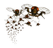 Cicada Swarm Stock Images