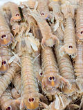 Cicale di mare - Small European locust lobsters. South italian fish market Royalty Free Stock Photos