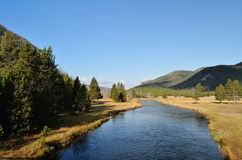 Cicha rzeka Obraz Royalty Free