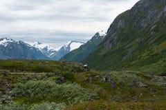 Ciclagem em Noruega Fotografia de Stock Royalty Free