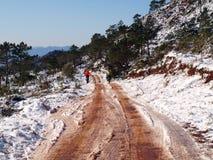 Ciclagem em uma estrada da lama Fotografia de Stock