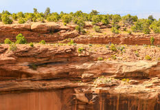 Ciclagem no monumento nacional de Colorado Imagens de Stock Royalty Free