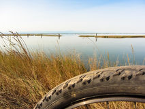 Ciclando nel giorno soleggiato nella laguna di Venezia ha offuscato la priorità alta Fotografie Stock