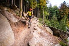 Ciclismo da equitação do motociclista da montanha na floresta do outono Foto de Stock