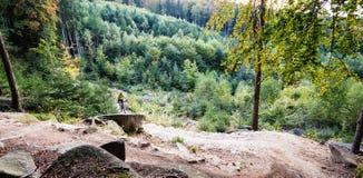Ciclismo da equitação do motociclista da montanha na floresta do outono Fotografia de Stock