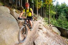 Ciclismo da equitação do motociclista da montanha na floresta do outono Foto de Stock Royalty Free
