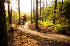Ciclismo da equitação do motociclista da montanha na floresta do verão Fotografia de Stock