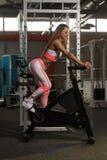 Ciclismo da jovem mulher no treinamento do halterofilismo da bicicleta Foto de Stock Royalty Free