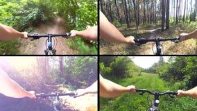 Ciclismo da pessoa na floresta do verde do passeio da bicicleta no dia ensolarado vídeos de arquivo