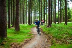 Ciclismo del ragazzo e dell'adolescente sulle tracce della foresta Fotografia Stock Libera da Diritti