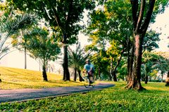 Ciclismo di mattina al vicolo della bici del parco pubblico immagini stock