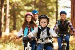 Ciclismo di montagna della famiglia sulla traccia della foresta, vista frontale, primo piano Fotografia Stock