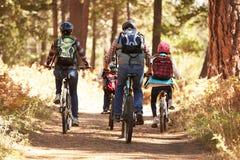 Ciclismo di montagna della famiglia sulla traccia della foresta, vista posteriore Immagini Stock