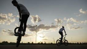 Ciclismo di stile libero degli amici degli adolescenti che esercitano le loro tecniche di atterraggio che fanno rotazione del lup video d archivio