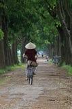 Ciclismo vietnamiano da mulher em uma estrada secundária Imagem de Stock