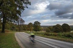 Ciclista in bello Richmond Park Landscape in autunno fotografia stock libera da diritti